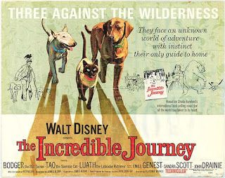 View from the Birdhouse: Dear Abby - Favorite Dog Movies: The Incredible Journey