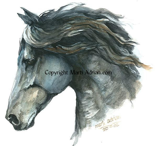Watercolor Horse Artist Watercolour Horse Head Painting