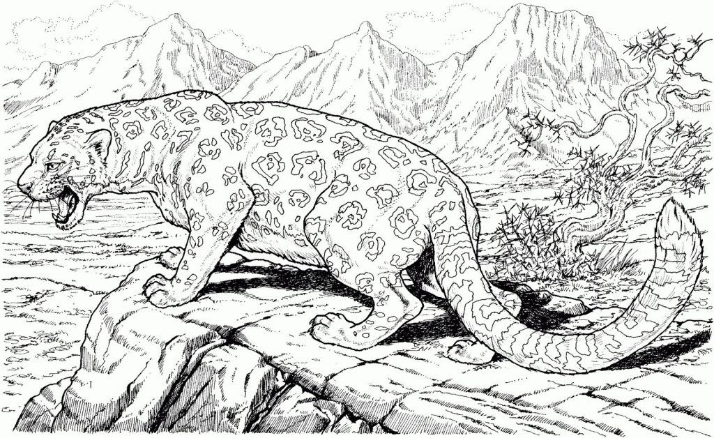 Complex Coloring Pages For Teens And Adults Best Coloring Pages For Kids Cat Coloring Page Dinosaur Coloring Pages Mandala Coloring Pages
