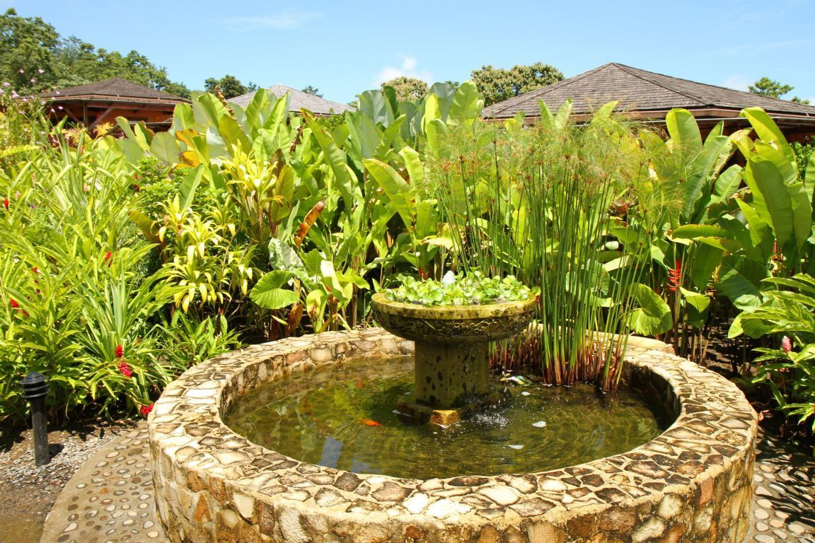 small koi pond Google Search Water Features Pinterest Pond