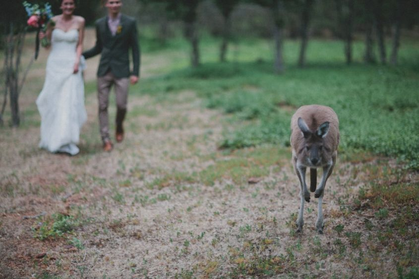 Ash+Sol's south-west wedding by Perth wedding photographer Still Love