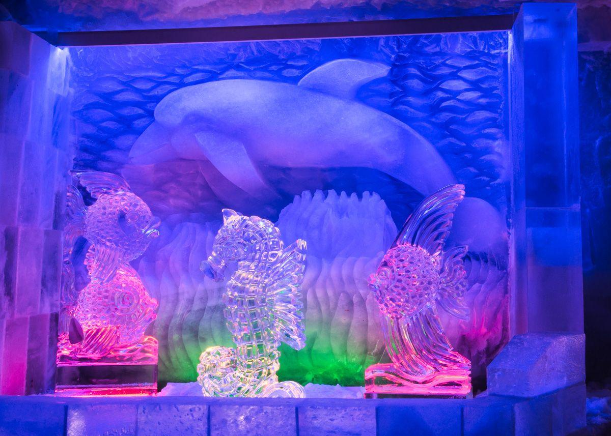 Aquarium Hintergrund, Delfin aus Gletschereis, Fische und #Seepferd aus klarem Eis.Breite ca. 3m. Eiskünstler Fredi Odermatt. #Eisskulpturen #Eisfiguren #Mittelallalin #Eispavillon #Saas-Fee #icesculptures  www.eisskulpturen.ch
