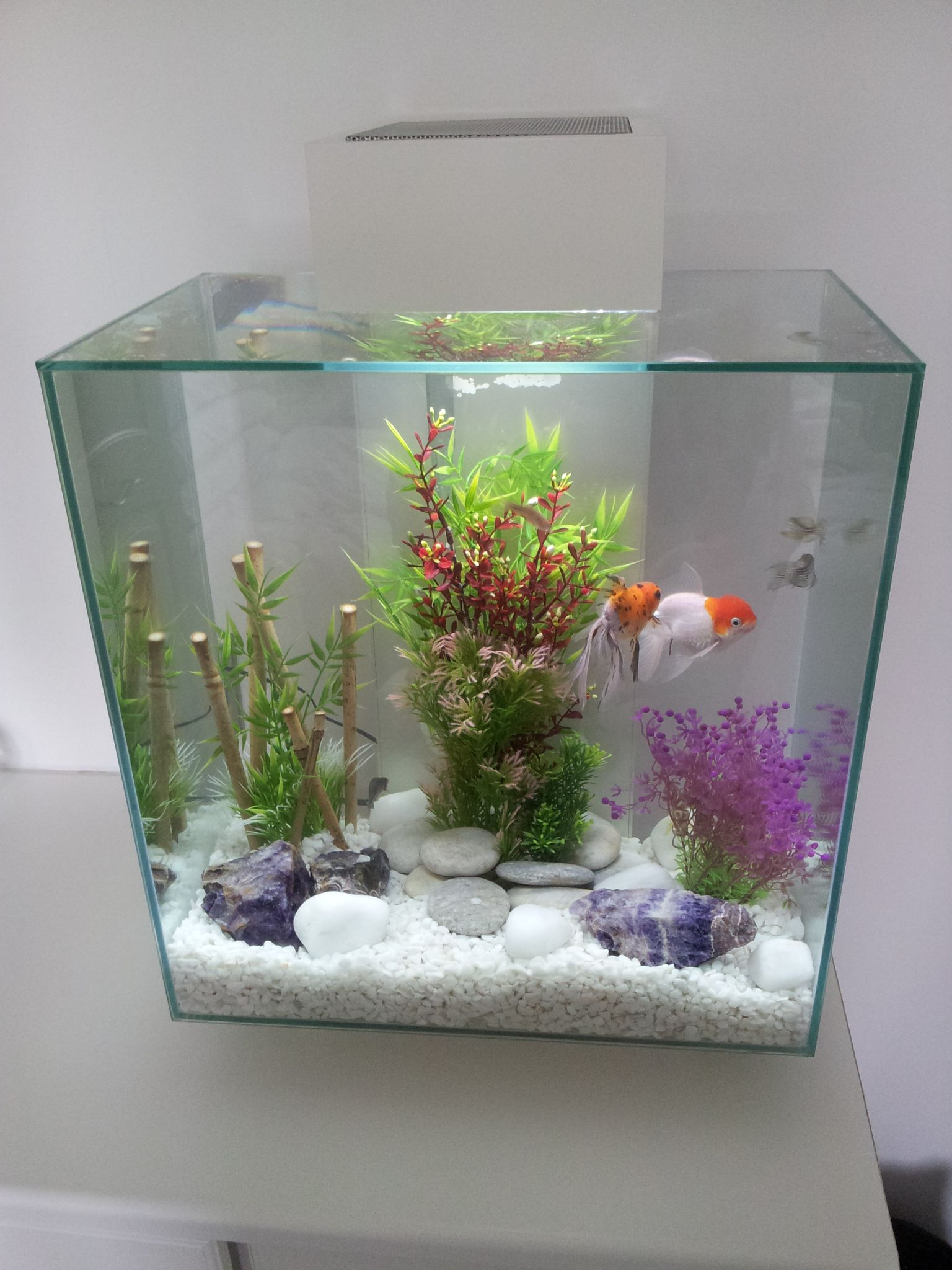 I decided my fish could do with a more modern des res so for Modern fish tanks