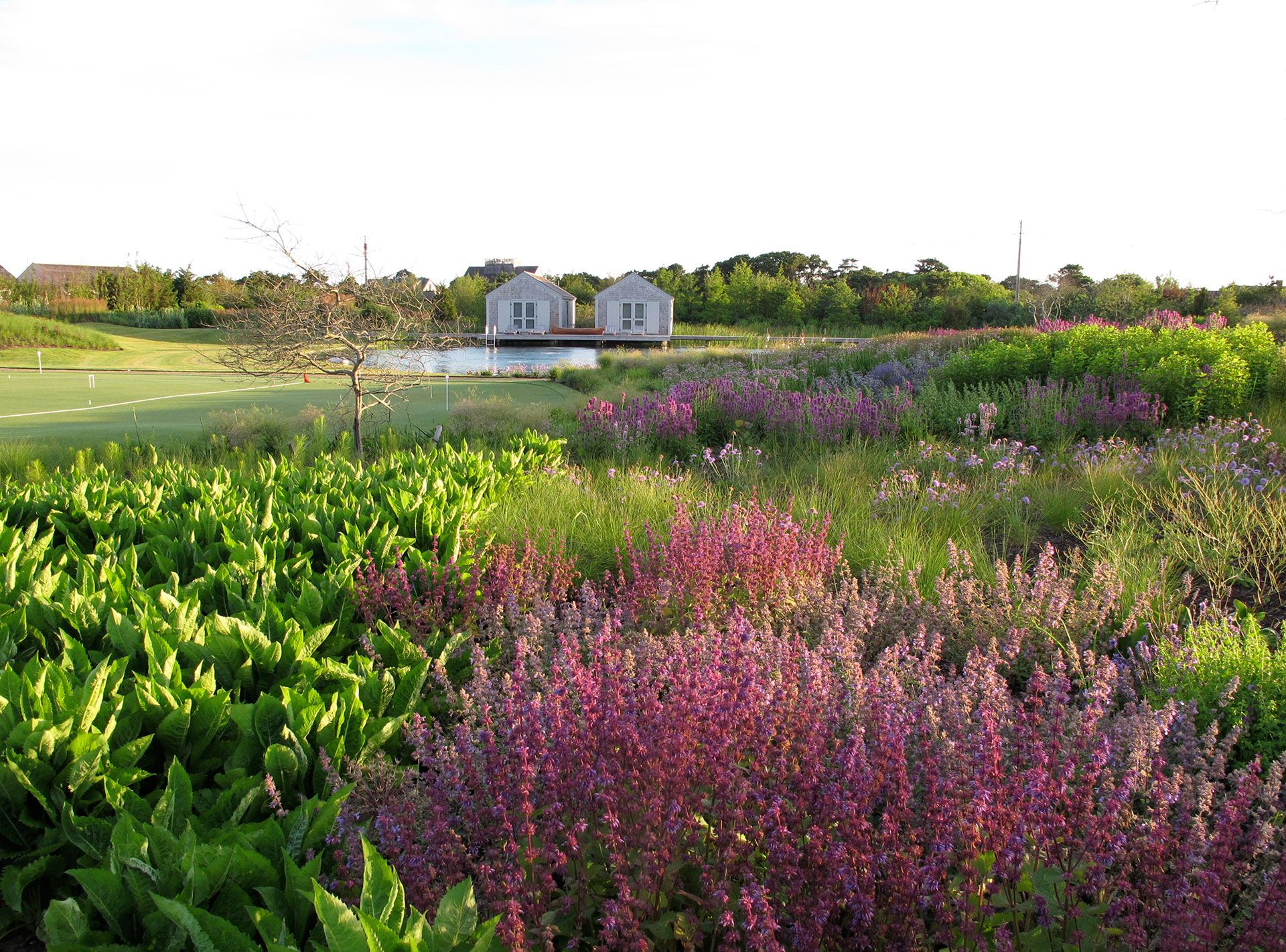 Garden on nantucket island ma by field operations james for Piet oudolf pflanzplan