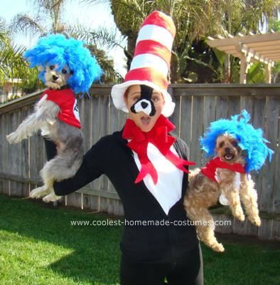Coolest Homemade Cat In The Hat Costume In 2020 Pet Halloween