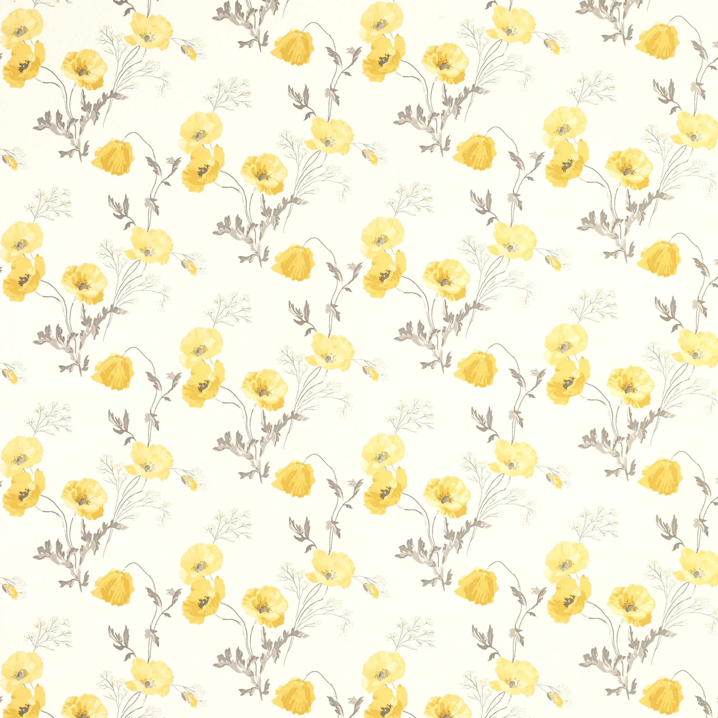 Poppy Meadow Primrose Yellow Floral Wallpaper Wallpaper
