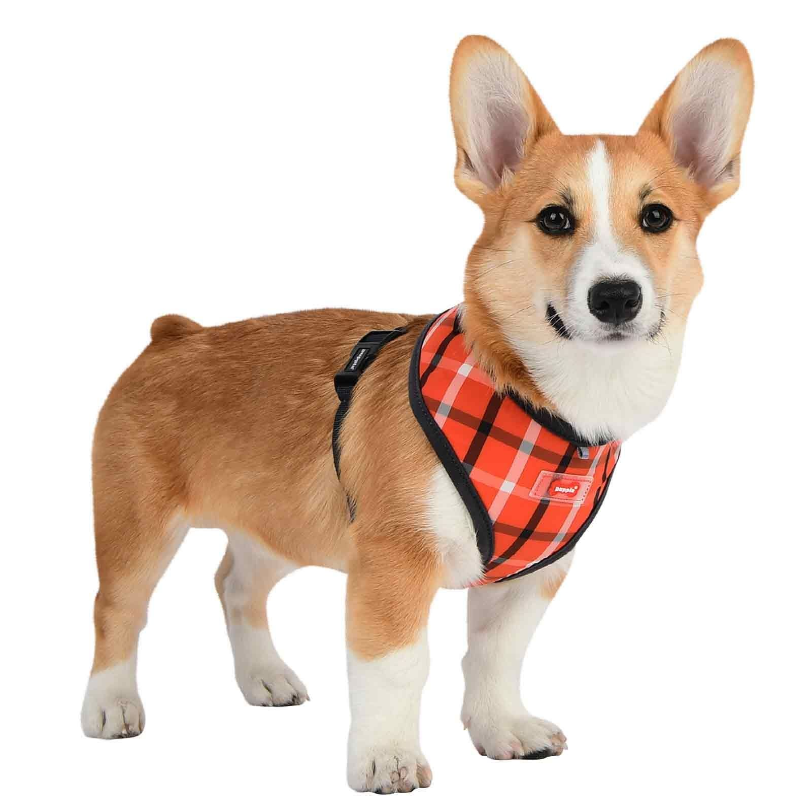 Puppia Baxter Dog Harness In Orange New Styles Just Arrived At