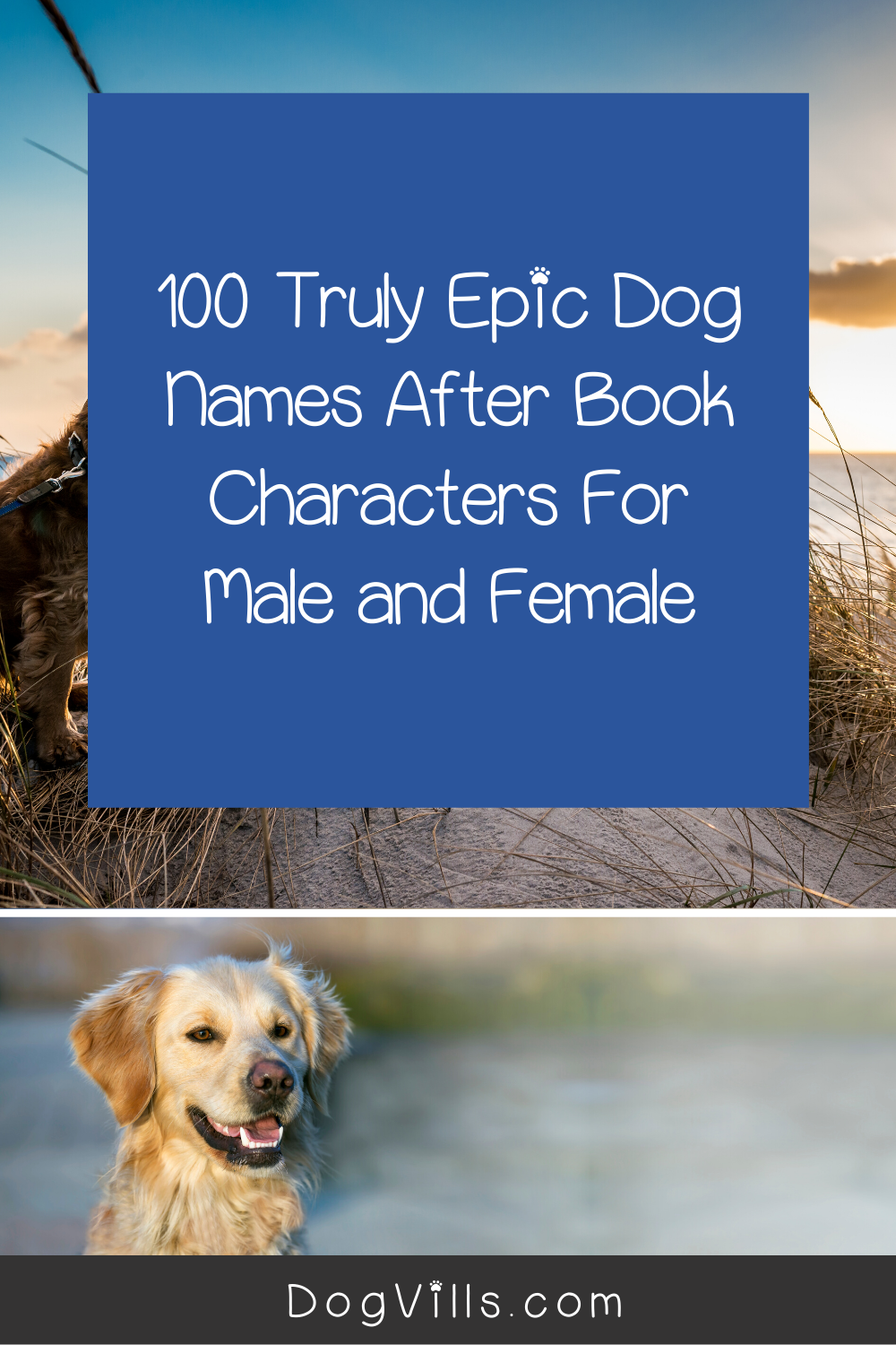 100 Truly Epic Dog Names After Book Characters In 2020 Dog Names