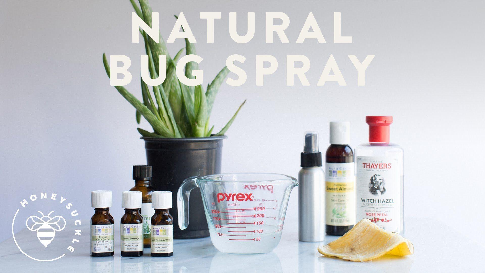 Pin by Rebecca Huls on Dog ideas Natural bug spray