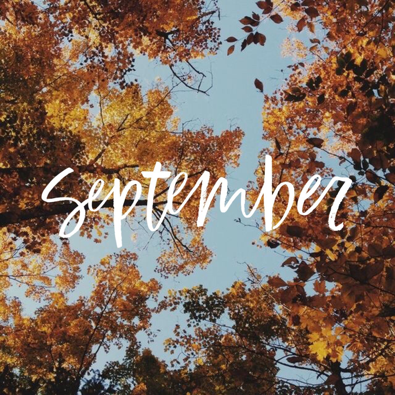 Pin By Mindy Nelson On Fall My Favorite Color September Wallpaper Hello September Hello September Images