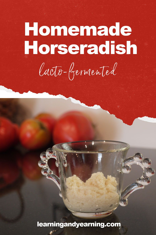 Homemade Lacto Fermented Horseradish Recipe In 2020 Real Food Recipes Recipes Delicious Healthy Recipes