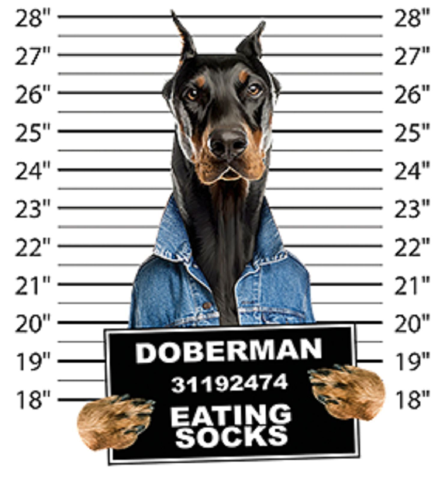 Doberman Pinscher Mug Shot Size Youth Medium To 6 X Large T Shirt