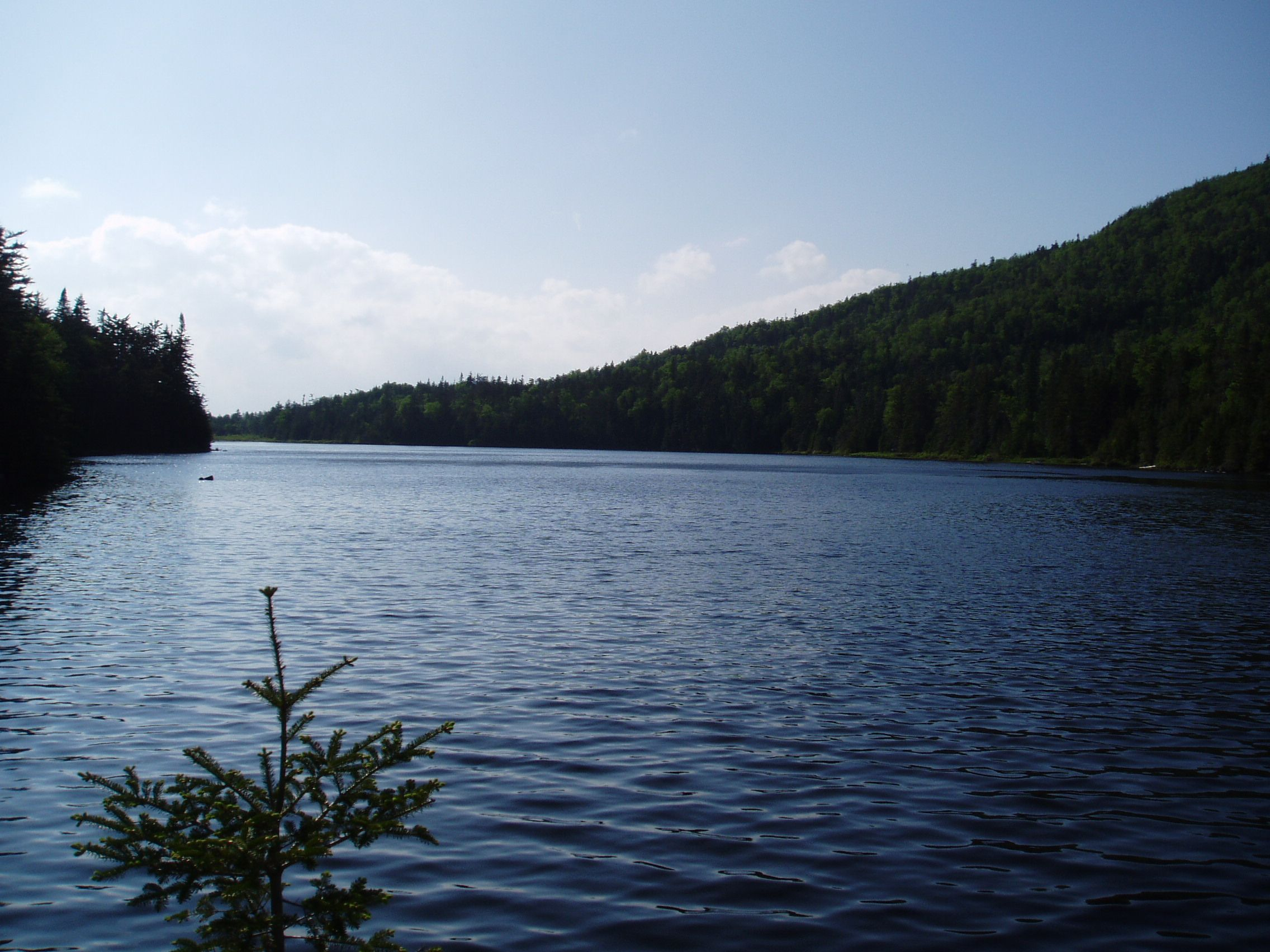 Boundary Pond in Pittsburg, NH is literally on the boundary of the US and Canada. This wonderfully remote pond is home to brook trout. Visit or fish this pond while vacationing at Lopstick Lodge, overlooking First Connecticut Lake in Pittsburg. http://www.cabinsatlopstick.com