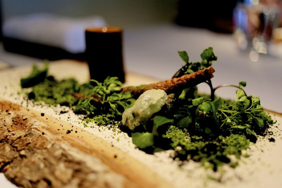Narisawa Tokyo Forest Floor Food Plating In 2019