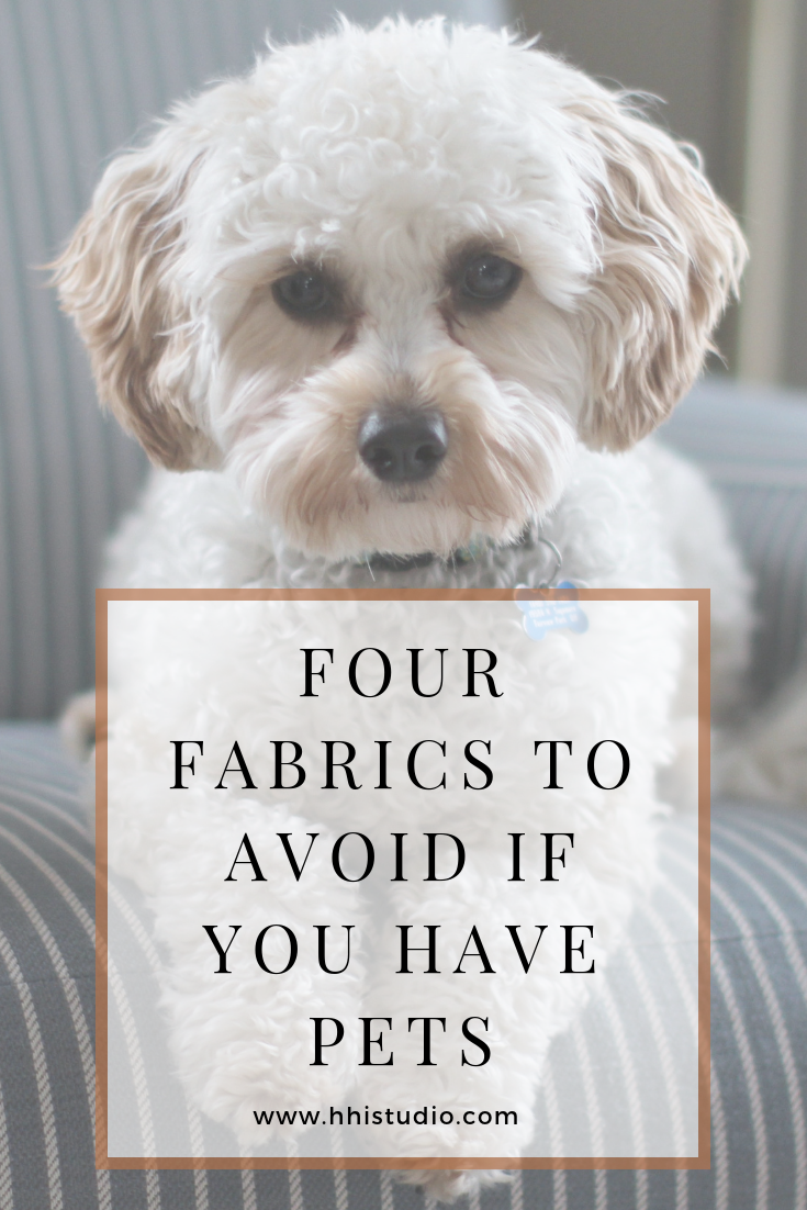 If You Have Dogs Or Cats Avoid These Fabrics On Your Furniture To Save You Money And Fru Pet Friendly Furniture Family Room Furniture Pet Friendly Living Room