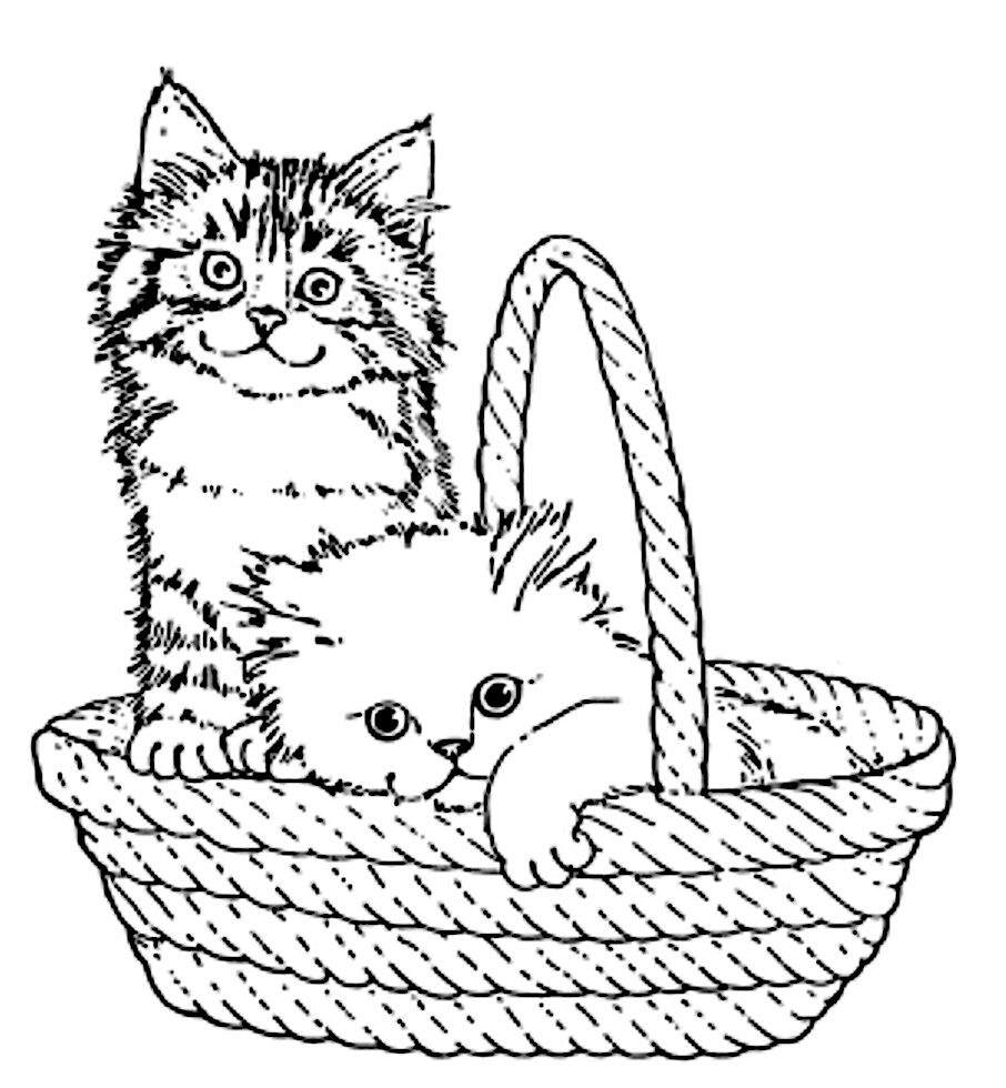 Color The Mommy Cat And Kittens Worksheet Education Com Kittens Coloring Animal Coloring Pages Kitten Drawing