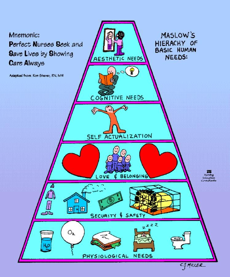 Maslows Hierachy Of Needs #nursing #nclex #maslowshierachy