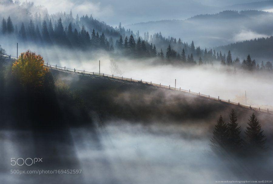 #photography Ukraine. Carpathians. Dzembronya. Autumn fog. by architecturalphotographer https://t.co/oCScmI8BXd #followme
