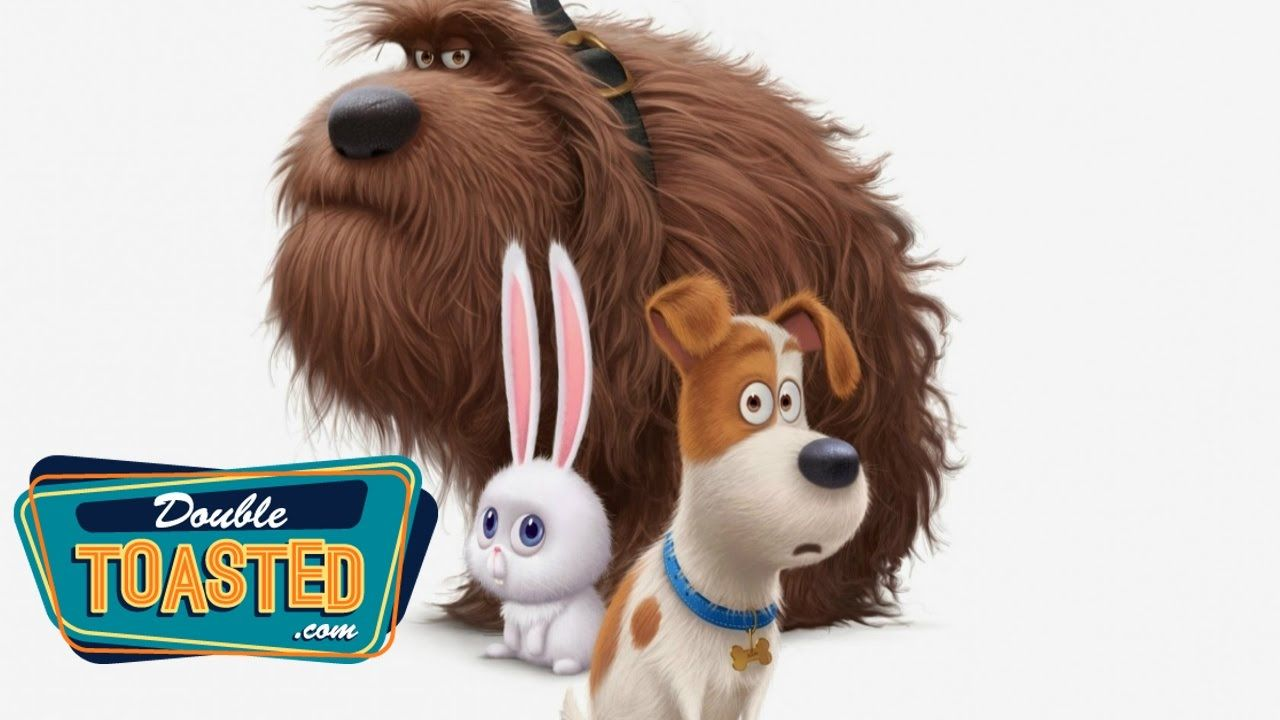 The Secret Life Of Pets Movie Review Double Toasted Review Pets Movie Secret Life Of Pets Dog Movies