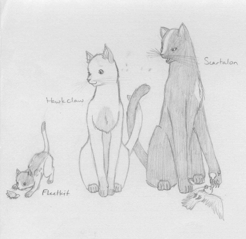 Warrior Cats Family 2 By Saasmiaona On Deviantart Cartoon Cat
