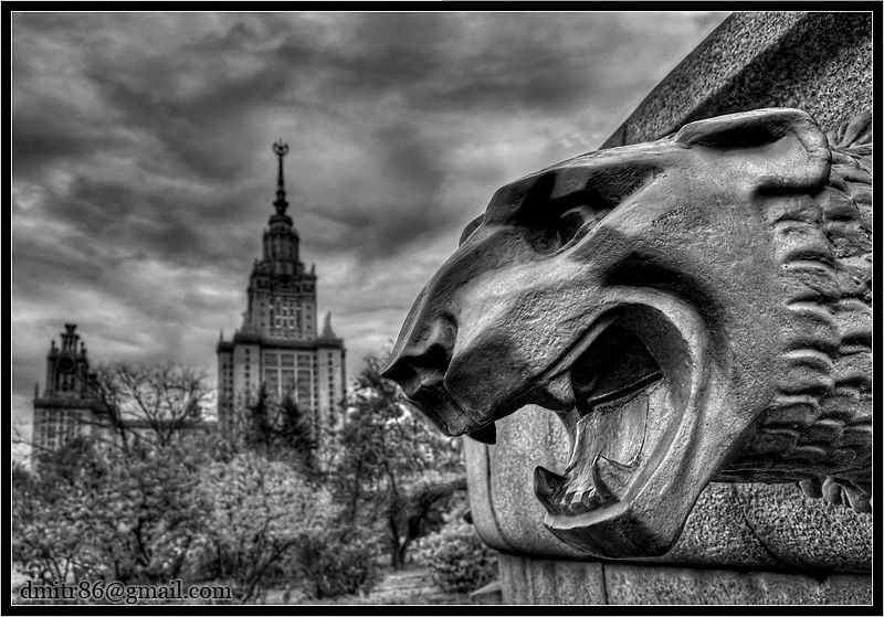 Lion,Moscow