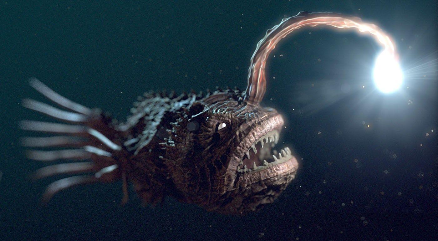 anglerfish-light-finding-nemo | Underwater creatures, Weird creatures, Sea  creatures