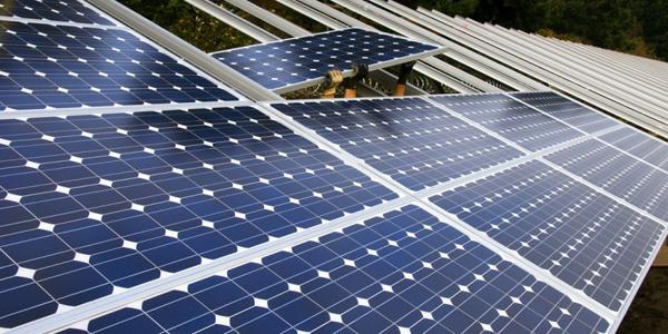 Best Solar Panels In Delhi Solar Panels For Sale At Very Low Cost Solar Panels Solar Best Solar Panels