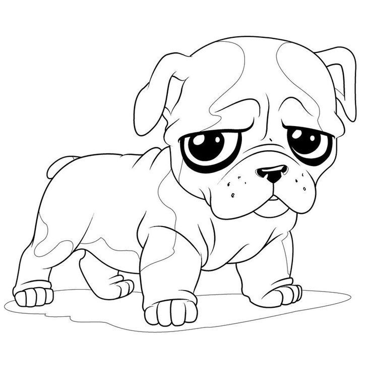Pug Coloring Pages Dog Coloring Page Cute Dog Drawing Puppy
