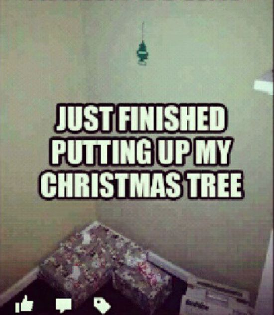 Christmas Tree Meme.Guys Be Like Just Finished Putting Up My Christmas Tree