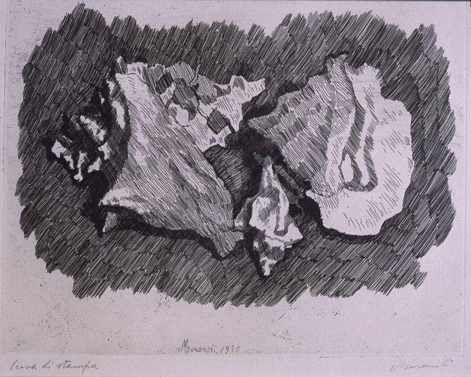Giorgio Morandi, Still Life with Shells