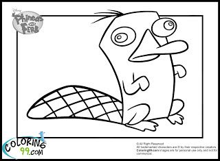 phineas and ferb coloring pages perry pinterest