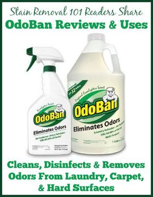 Odoban Odor Eliminator Reviews & Uses | Laundry supplies and