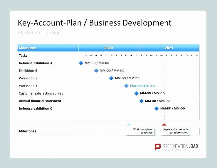 Strategic Account Planning Template In 2020 Business Plan