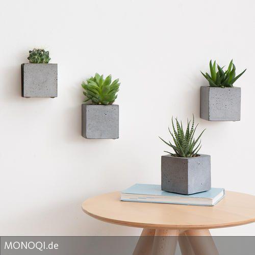 Kakteen \ Co als Design-Objekt Ehrentag, Pflanze und Wände - pflanzen deko wohnzimmer