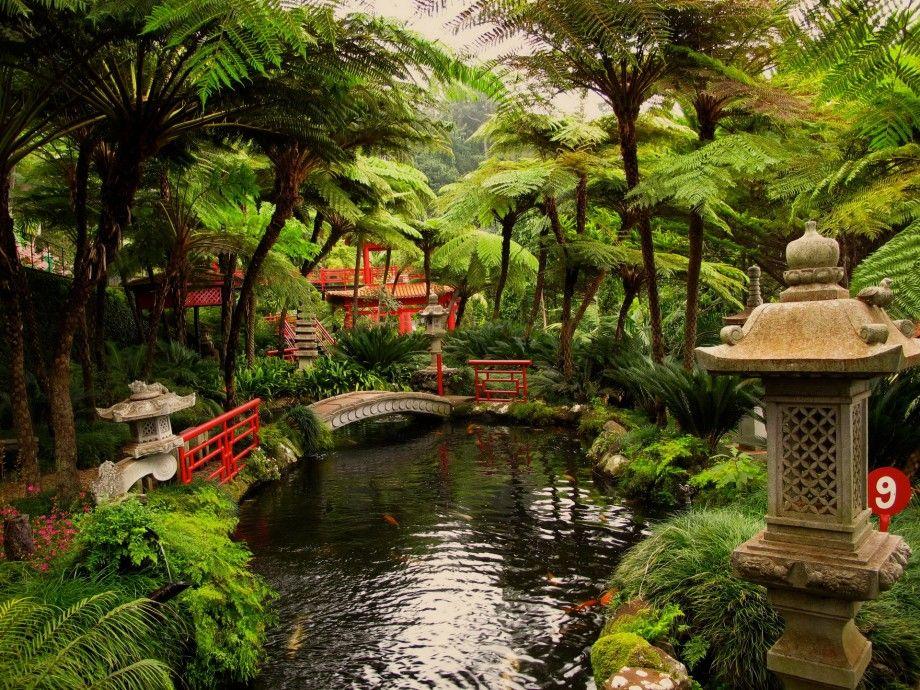 beautiful hawaiian zen garden - photo #7