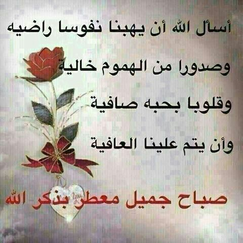 Pin By Chamsdine Chams On صباح مساء الخير Arabic Quotes Arabic Calligraphy Arabic