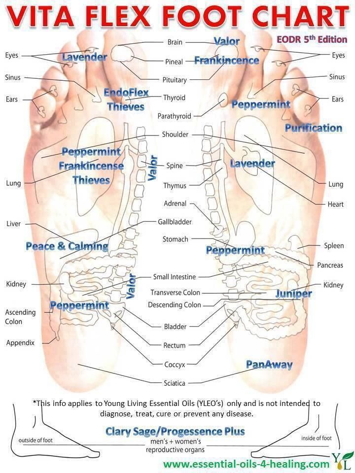 Young living essential oils vita flex foot chart also pinterest rh