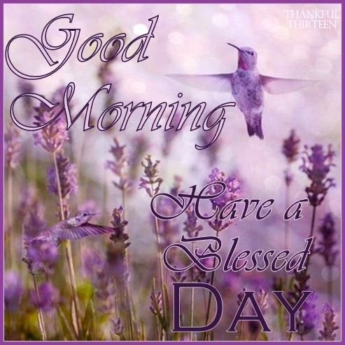 Hummingbird Blessed Day T T Pinterest Hummingbird Purple And