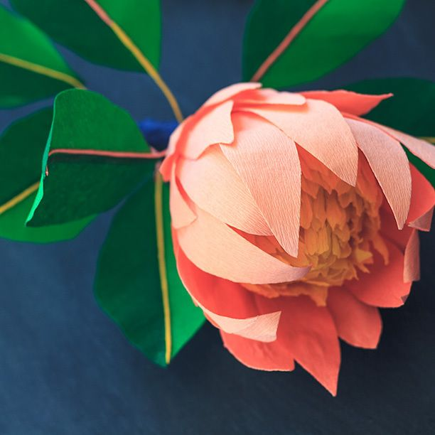Close up of my crepe paper King Protea--or at least my interpretation of this prehistoric looking flower.