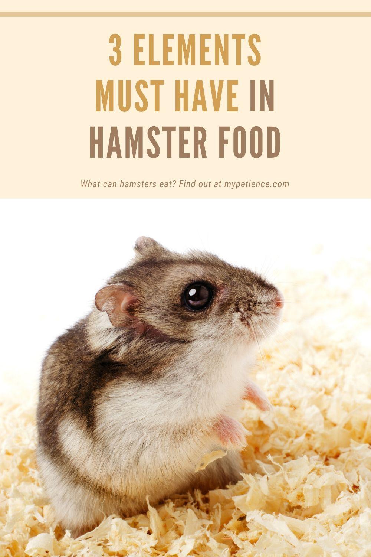 ca546da09bb09f3f99d46be08365b07d - How To Get Food Out Of Hamster S Cheeks