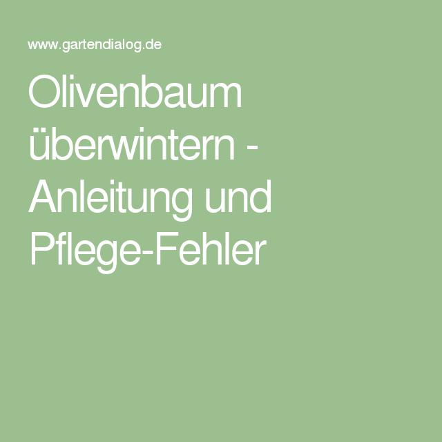 olivenbaum überwintern - anleitung und pflege-fehler | garten, Wohnzimmer