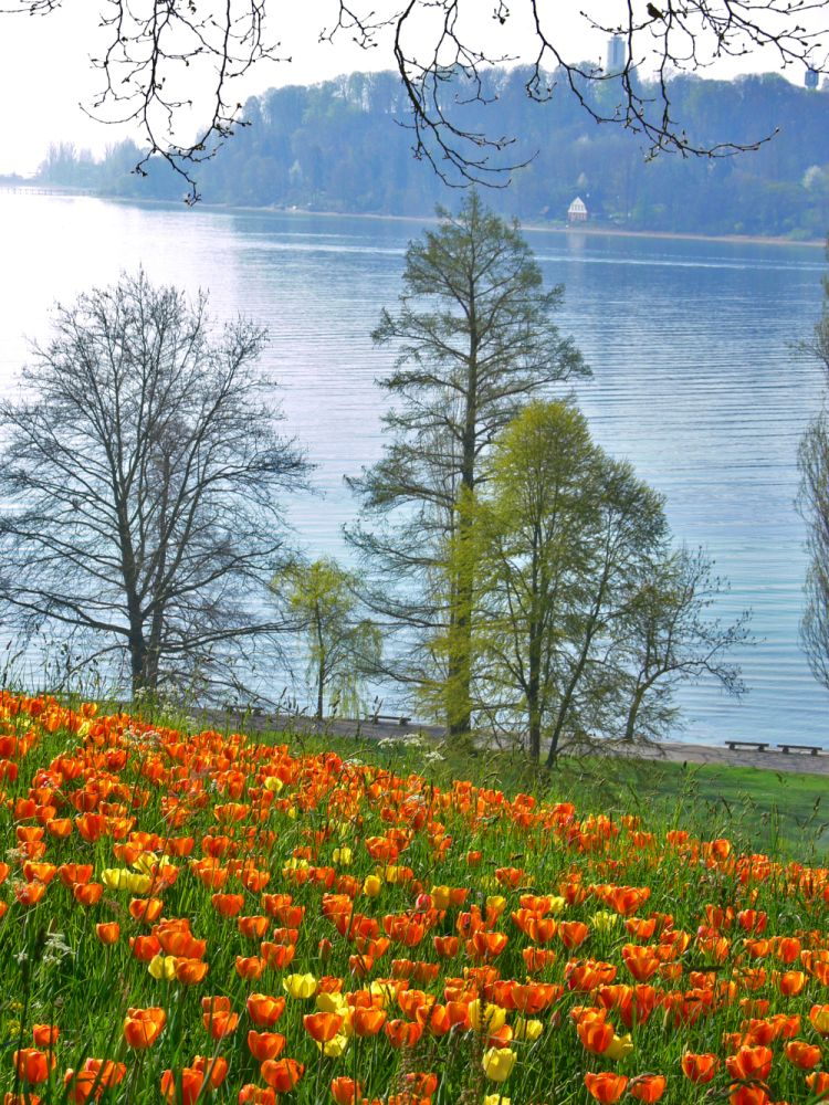 Mein Buntes Kreativalbum Bodensee Urlaub Bodensee Germany Insel Mainau