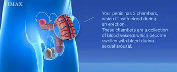 http topstamina com pil pembesar penis vimax pil pembesar penis no