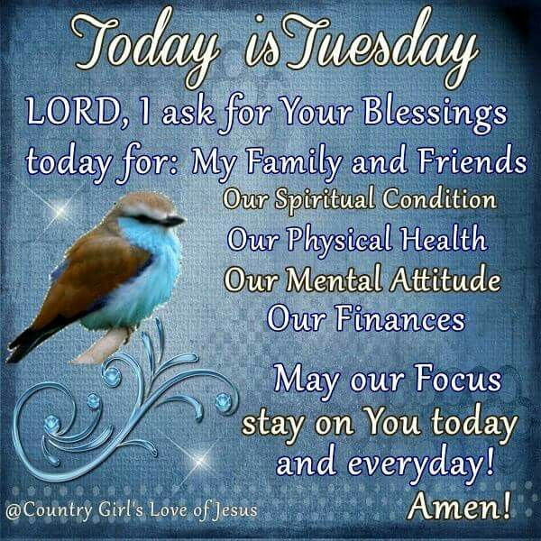 Today Is Tuesday day tuesday tuesday quotes tuesday blessings tuesday images…