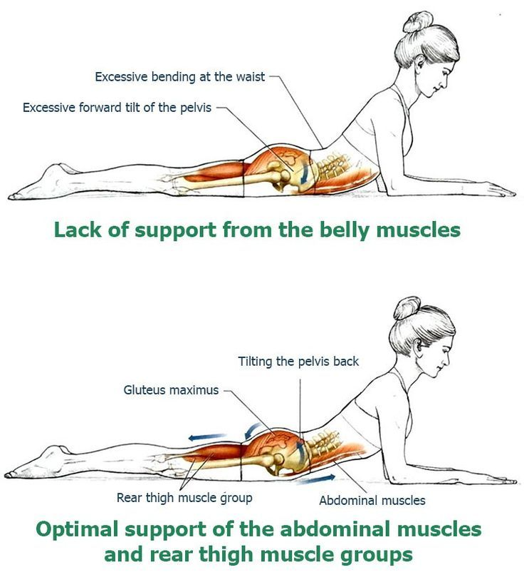 Back extension is a widely used exercise to strengthen the