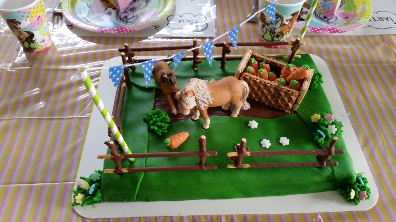 Pferdekuchen Von Dr Oetker Pferdekuchen Pferde Kuchen Kindergeburtstagssnacks
