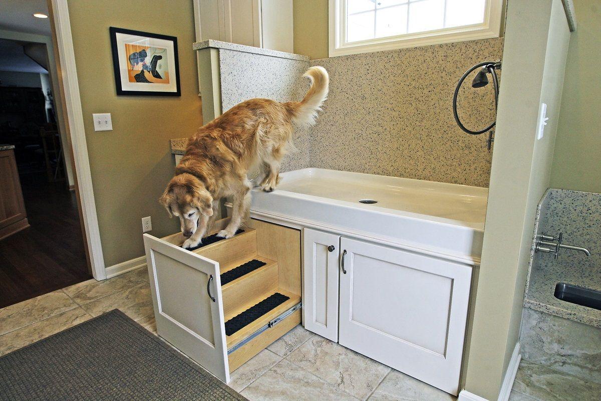 Smart hidden steps mud rooms dog grooming stations pinterest smart hidden steps solutioingenieria Image collections