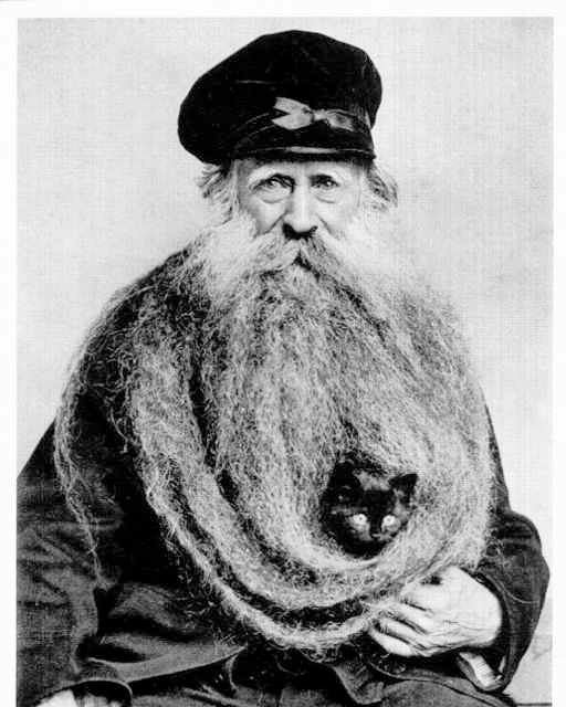 Photo of Cat in His Beard Bearded Man with Kitten Old Man Unusual Long Beard Funny Fancy Hat Charming Weird Eccentric Vintage Photography Photo Print