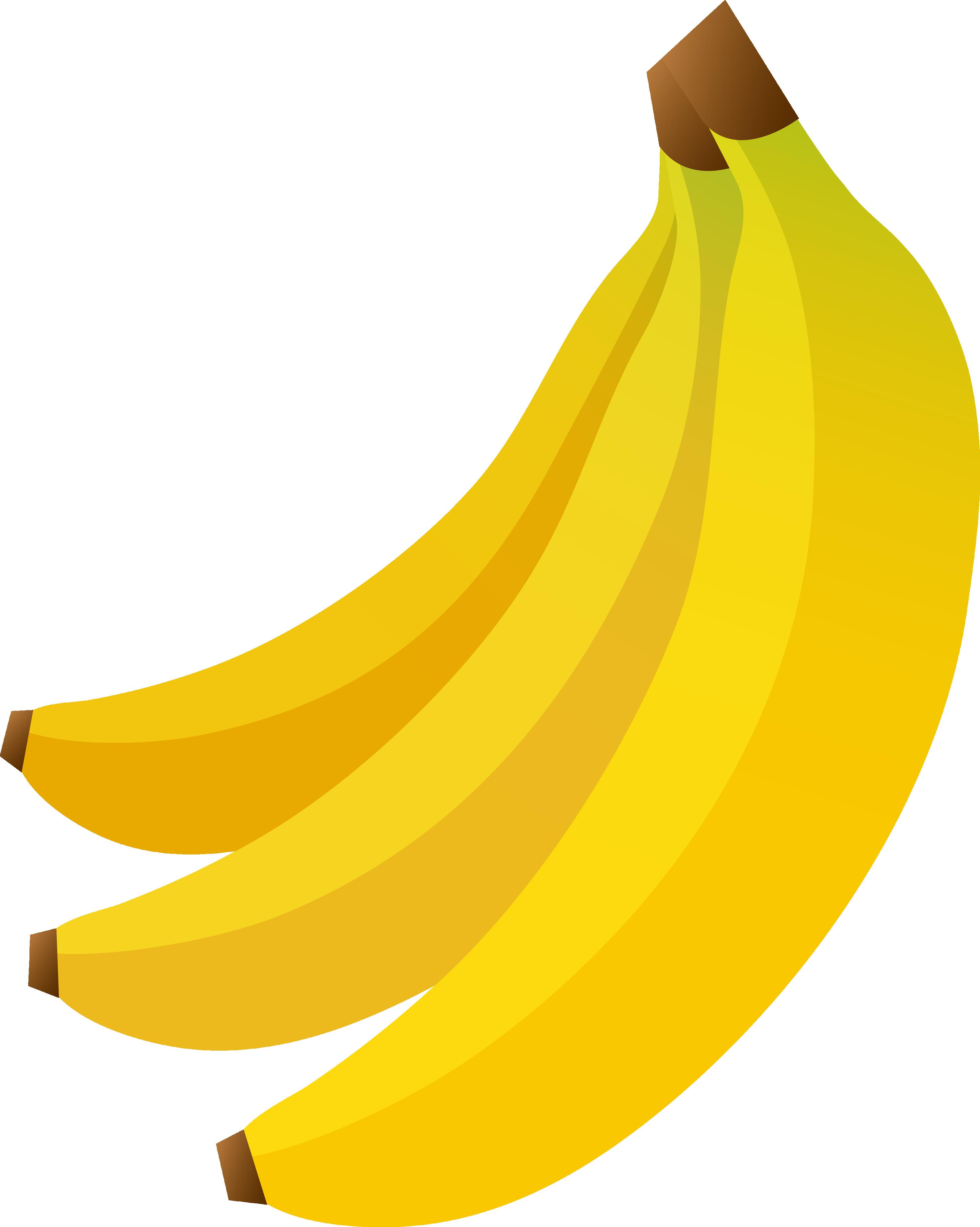 Banana Clipart Png Image Fruit Clipart Banana Picture Banana