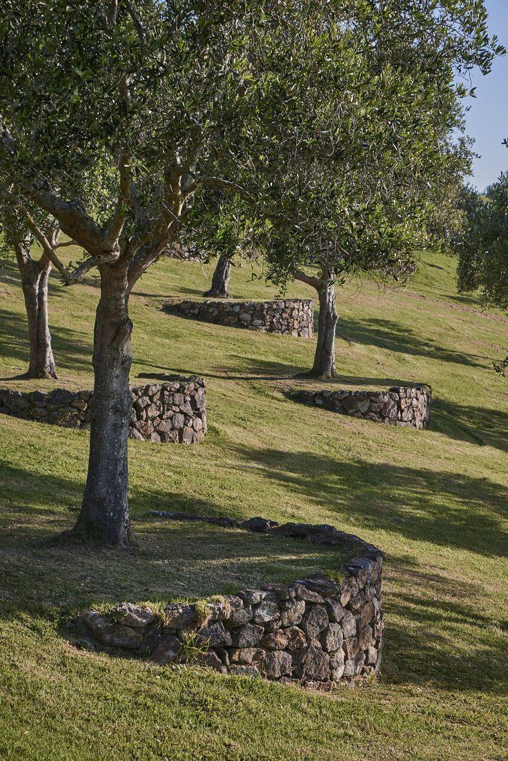 Piscina Su Terreno In Pendenza pin di renzo costa su piscine ed esterni nel 2020 (con